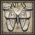 Thumb - Atlas - Vórtice (2014)