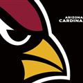 Thumb - Arizona Cardinals - 1600X1200