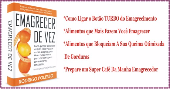 "Cover - E-book do 1º Capítulo do Best Seller ""Emagrecer De Vez"""