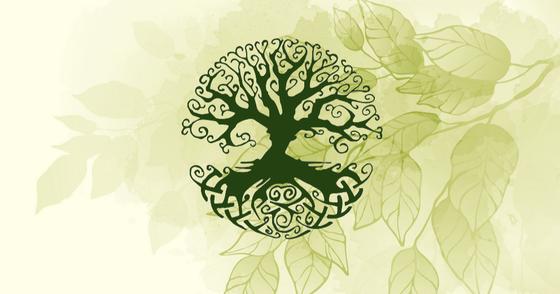 Cover - Aromaterapia para os Ciclos Femininos - Apotecários da Floresta