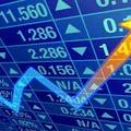 Thumb - Oportunidade de Investimento