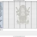 Thumb - Tabela de acompanhamento completa