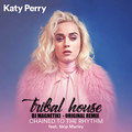 Thumb - Katy Perry  - Chained To The Rhythm (Original Mix Dj Magnetiki)
