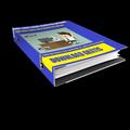 Thumb - E-book grátis sobre como trabalhar pela internet