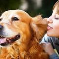 Thumb - Se Você Ama Seu Cãozinho Precisa Ver Isso!